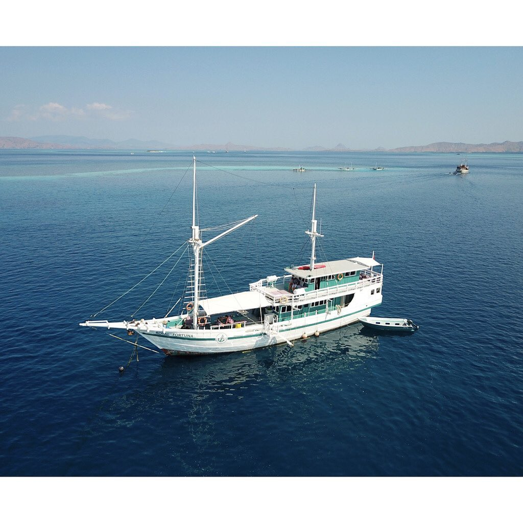 3 Advanced but Rewarding Spots in Komodo Diving Liveaboard