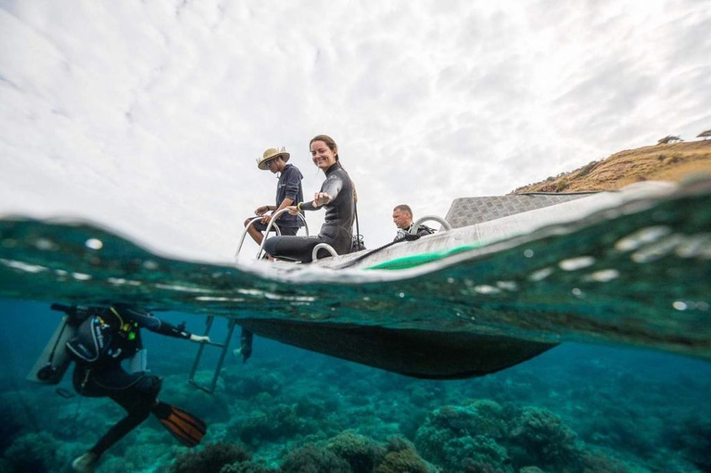 Why Scuba Diving In Komodo National Park Is Beautiful