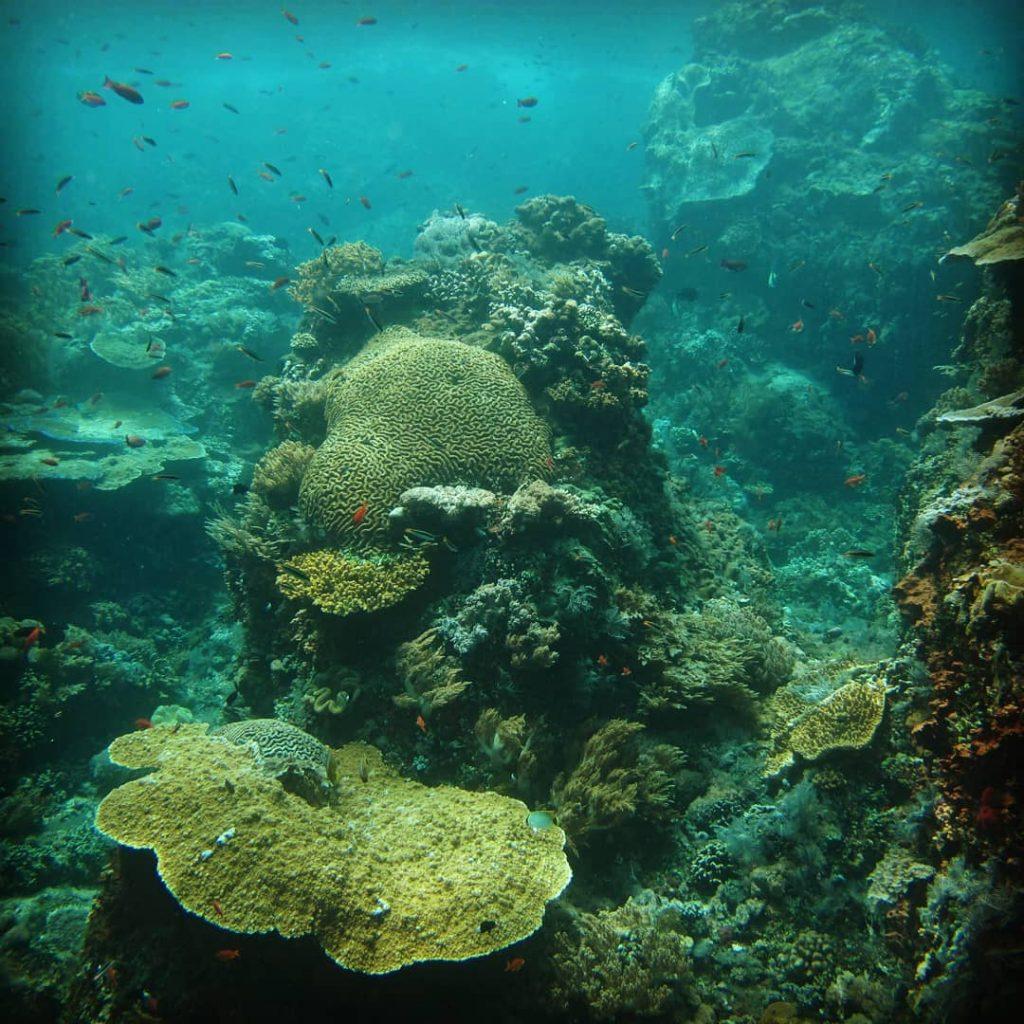 Gili Selang: The Newest Bali Diving Spot
